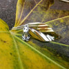 NEW - Deluxe Tree Spirit - Kodama/Leaf Necklace