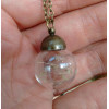 Round Taraxacum Bottle Necklace