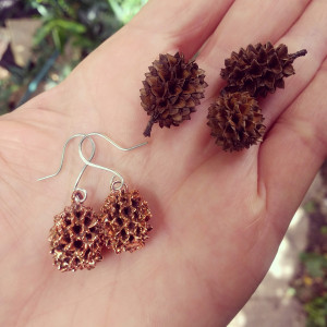 NEW - Casuarina Cones Earrings