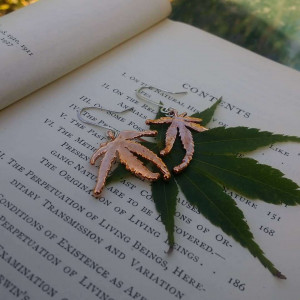 NEW - Real Japanese Maple Leaf Earrings