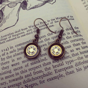 Elegant small Steampunk Earrings